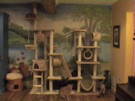 Time-lapse of cats on big cat tree - YouTube