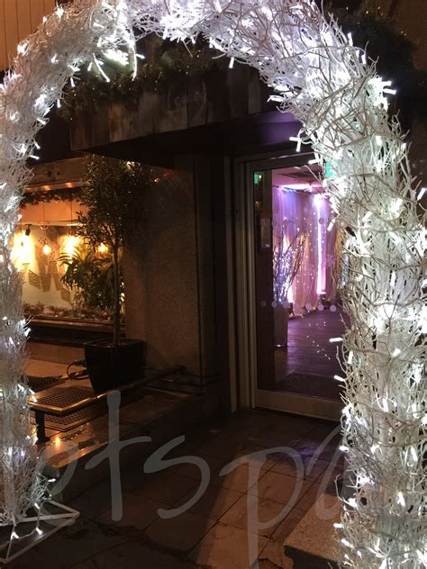 Winter Crystal Light-up Branch Arch - So Lets Party