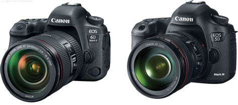 Should I Get the Canon EOS 6D Mark II or the 5D Mark III?