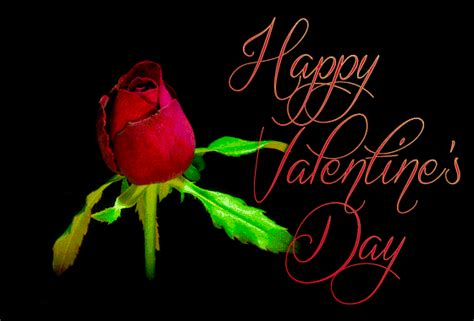 Valentines Love And Roses Animated Gifs - Best Animations