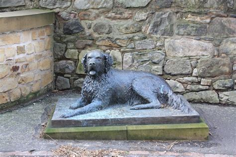 Dog sculpture | This sculpture of Bum, a famous dog from