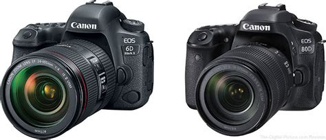 Should I Get the Canon EOS 6D Mark II or the EOS 80D?